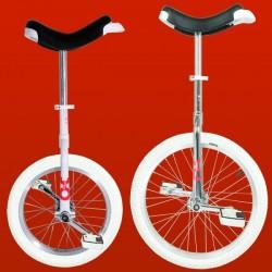 Monociclo Only-One Edição Limitada 20''