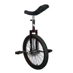 Monociclo Evolution Alu 20''